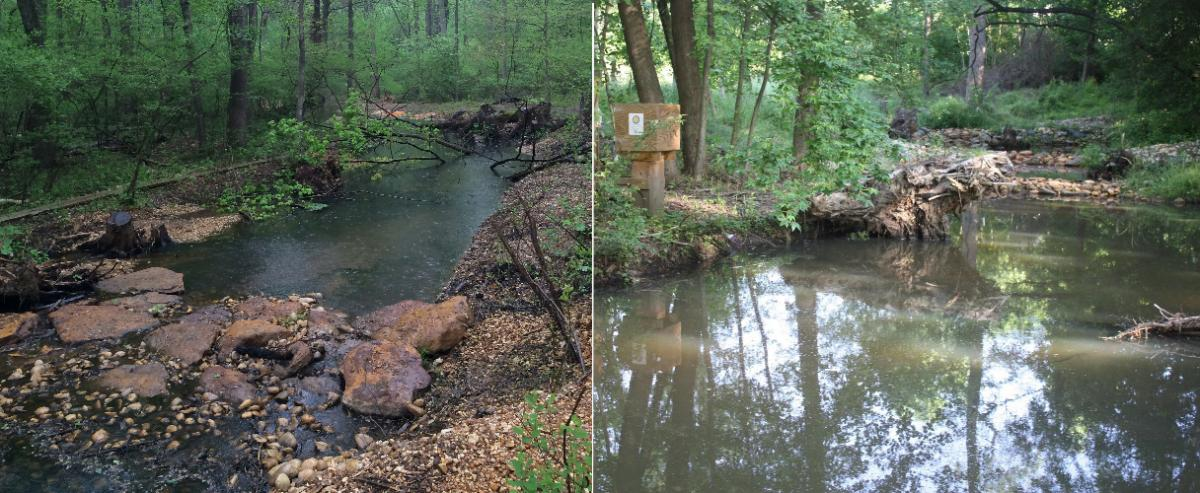 Side-by-side photos of two restored streams