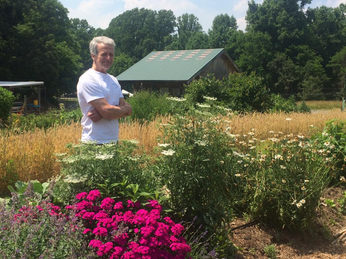 Man in grassy garden