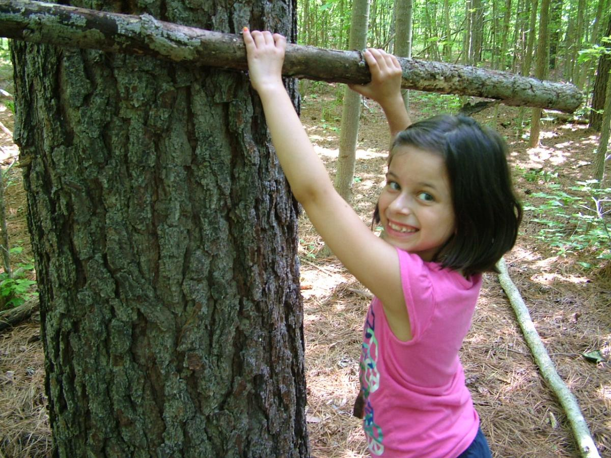 Young girl in forest, holding a large branch up against a tree