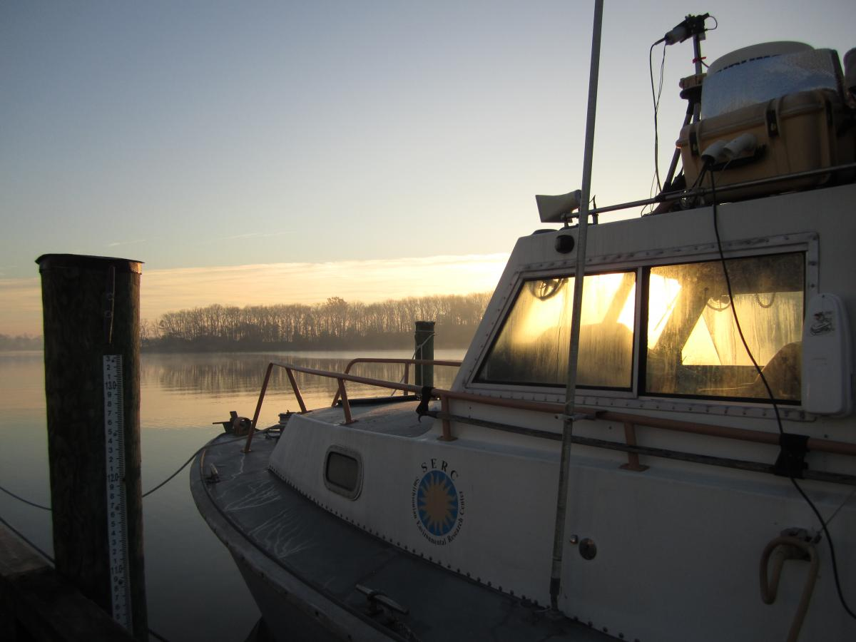 Research vessel the R/V SERC