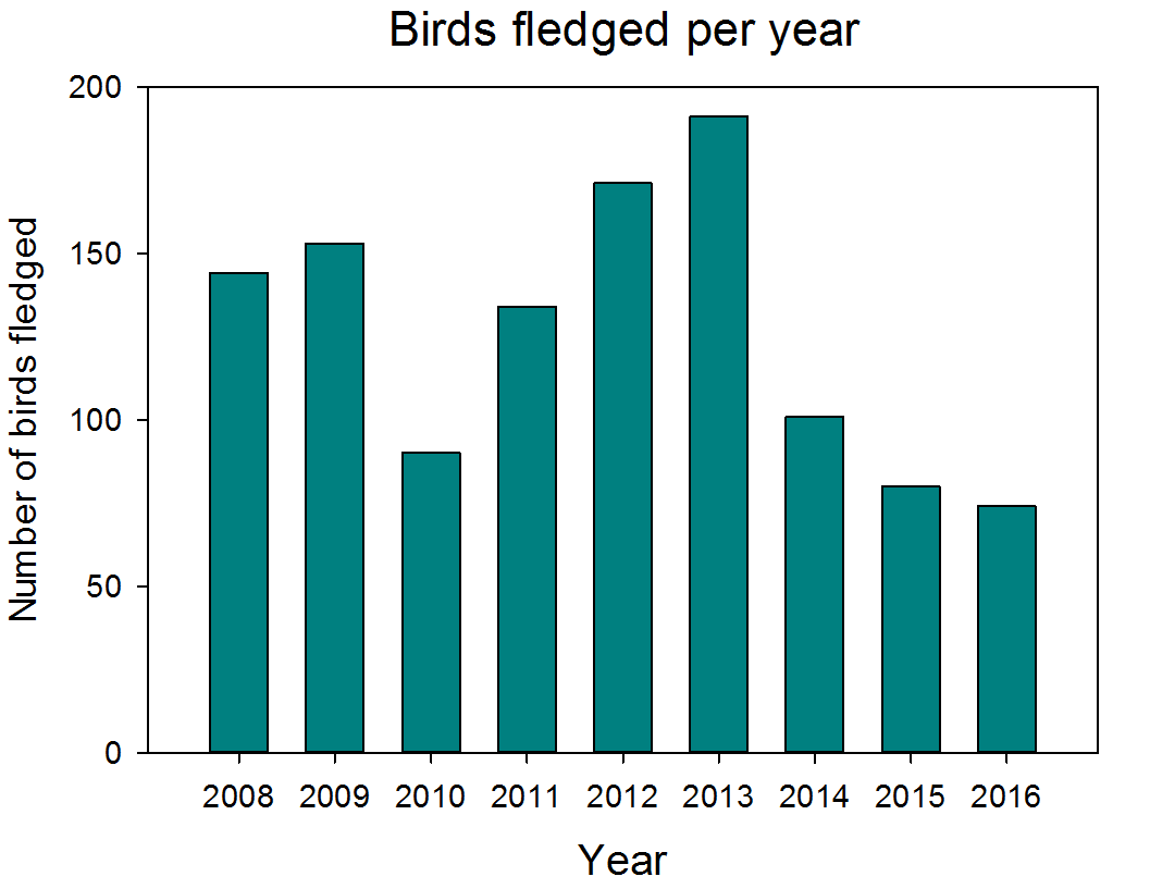 Graph of fledglings per year