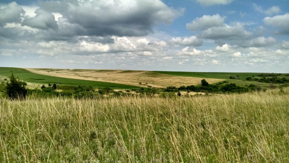Landscape view of grassland under cloudy sky