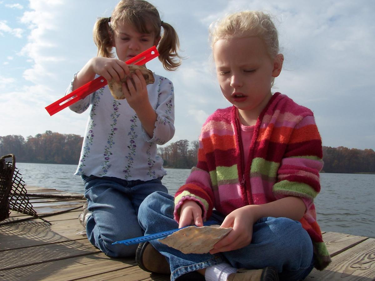 Grades K-2 students learn how to measure oysters