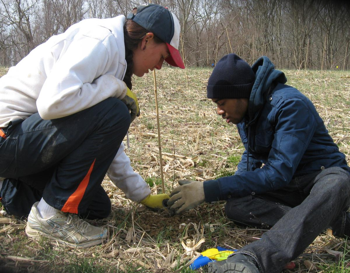Biodiversitree volunteers