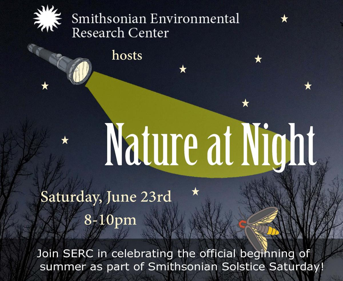 Image of Nature at Night promo flyer