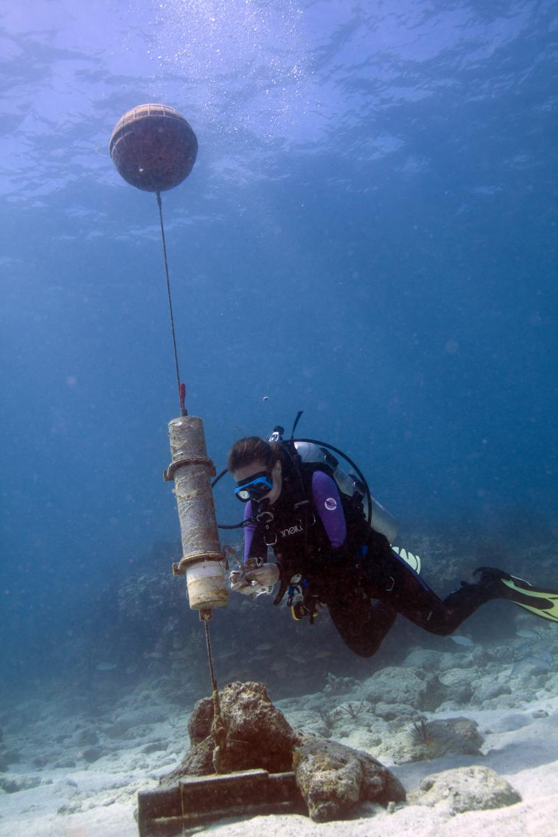 Diver measuring acoustic output from a marine environment
