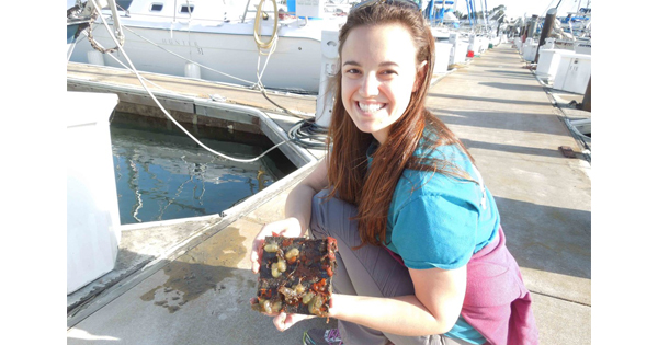 female scientist holding plate with marine life on docks