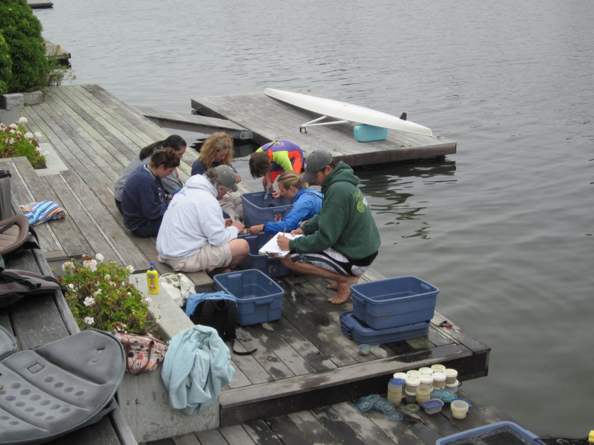 Volunteers at Seadrift Lagoon