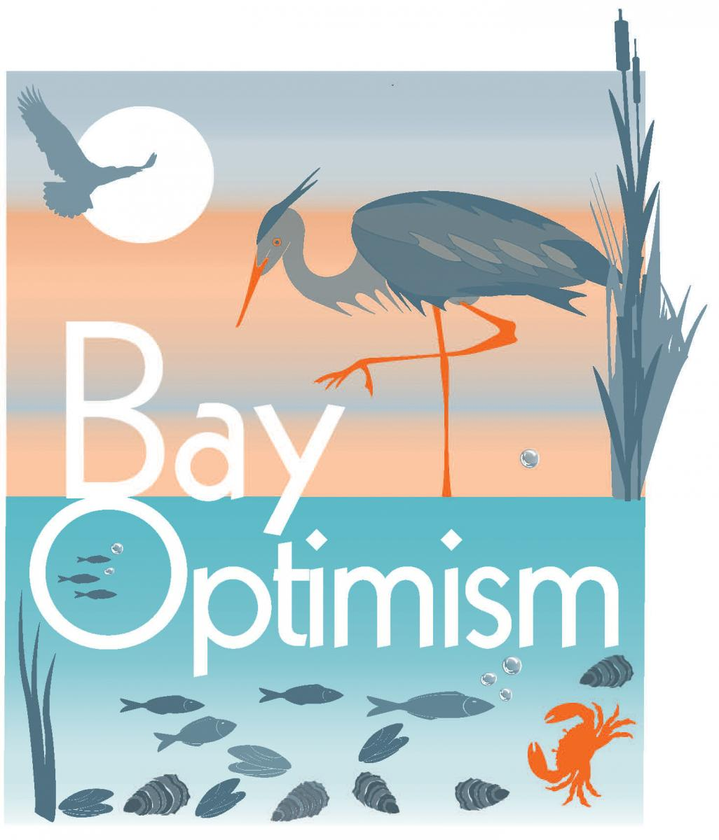 Bay Optimism