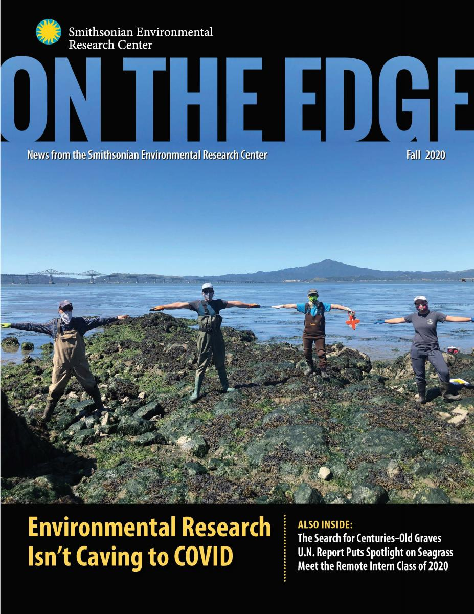 Front cover with four researchers on rocky shore in face masks