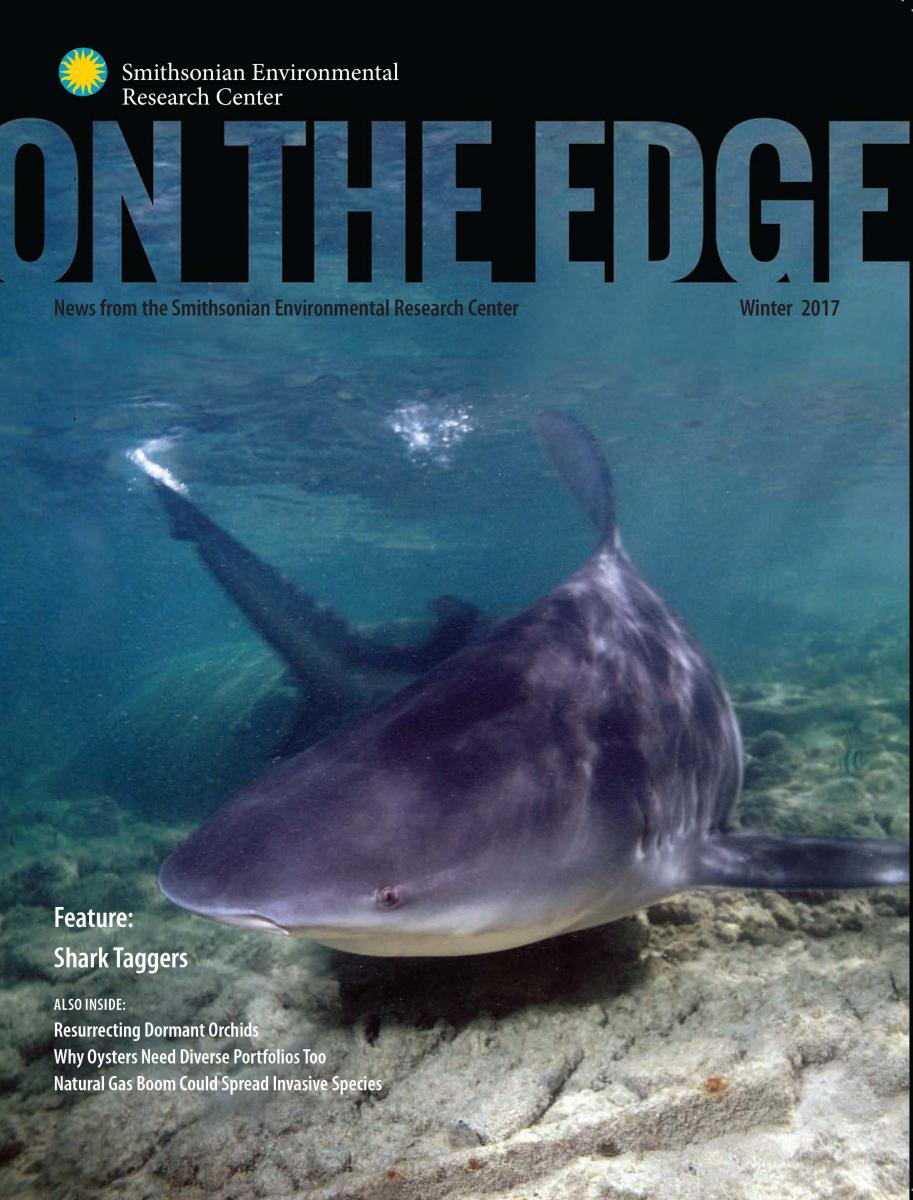 Front Cover of Winter 2017 On The Edge newsletter