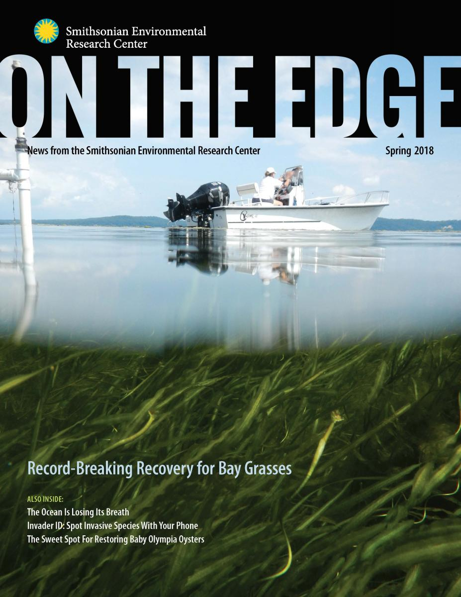 Front Cover of Spring 2018 On The Edge Newsletter