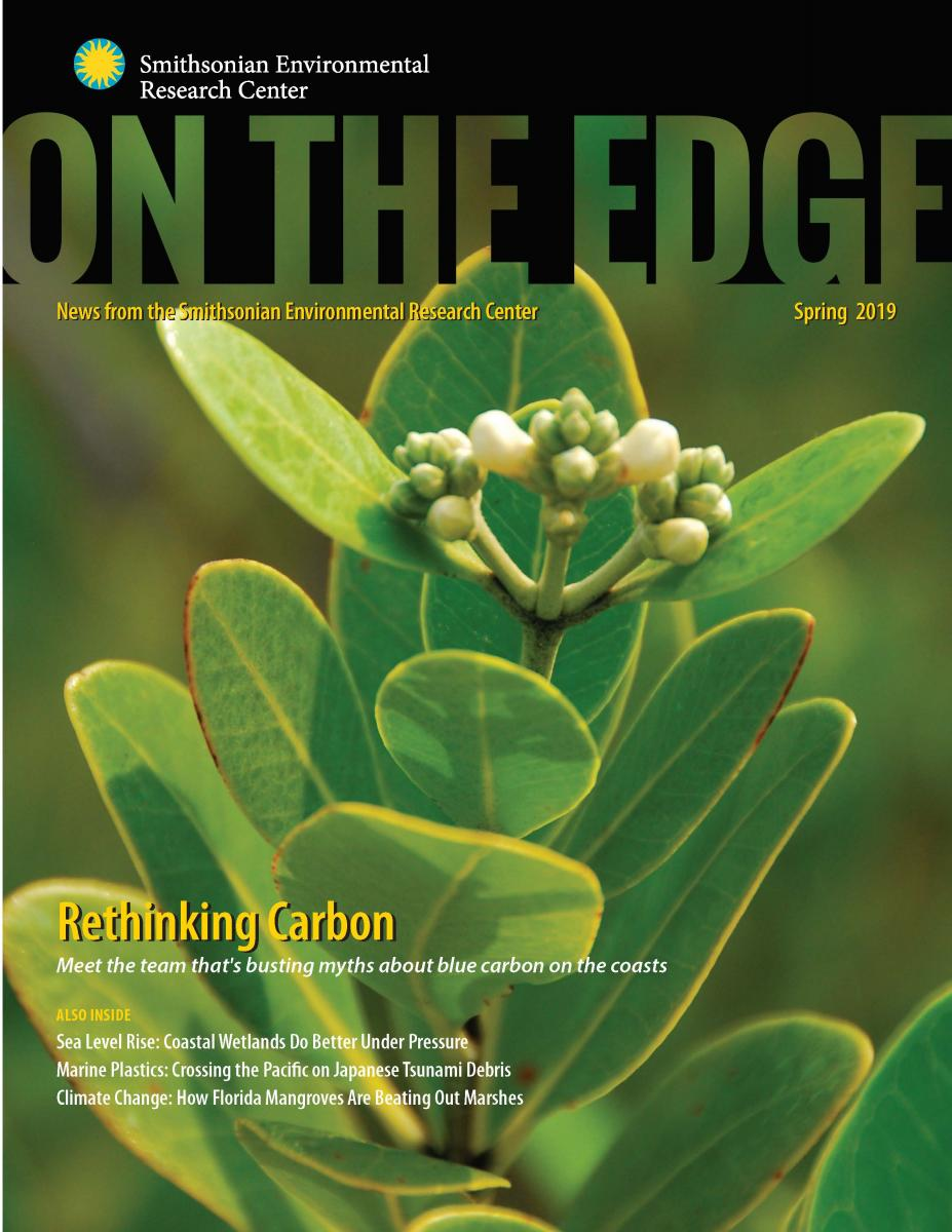 Front Cover of Spring 2019 On The Edge newsletter