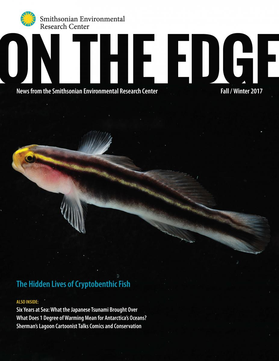 Front Cover of Fall 2017/Winter 2018 On The Edge Newsletter