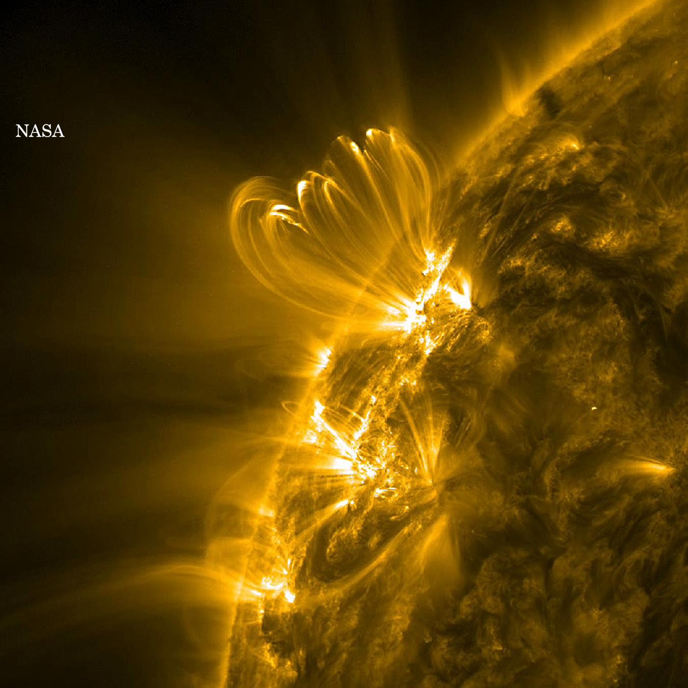 Ultraviolet Solar Activity (NASA/SDO)