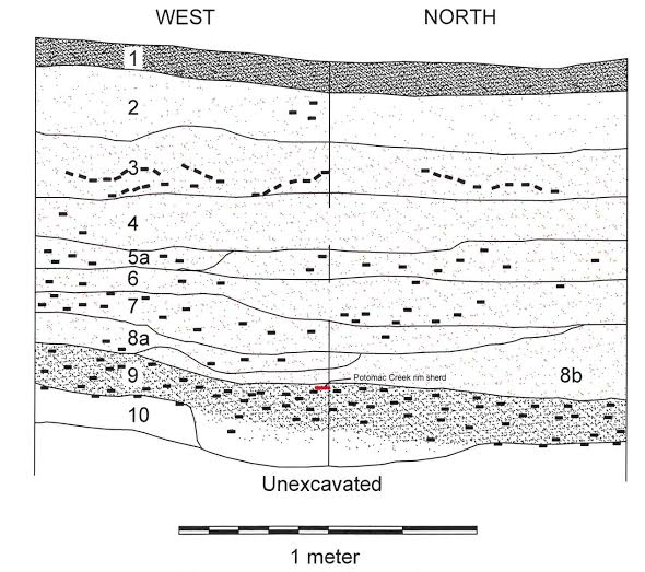 Soil profile of unit 11