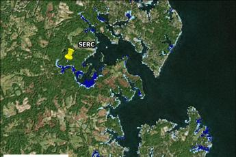 Blue-carbon map of marshes surrounding SERC
