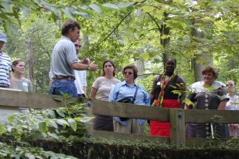 Adults on a forest walk
