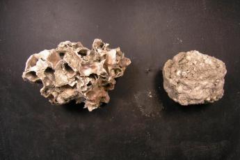 Dry bryolith.