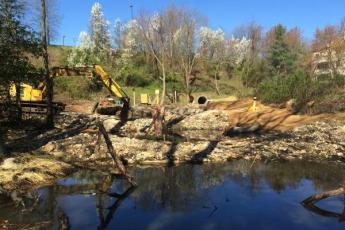 Crane at restoration site