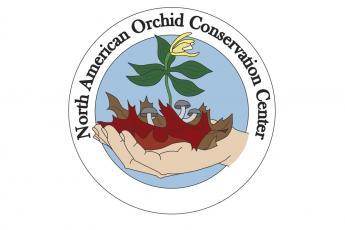 NAOCC logo