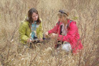 Two women sit on ground examining tree seedlings