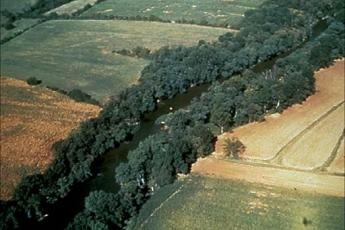 croplands and riparian buffer from the air
