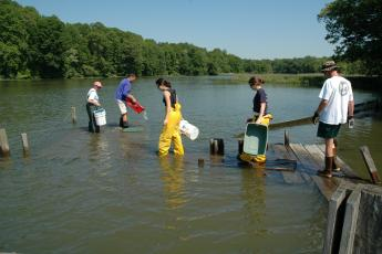 picture for Nearshore Community of Fish and Crustaceans project