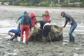 Group measures oyster travel