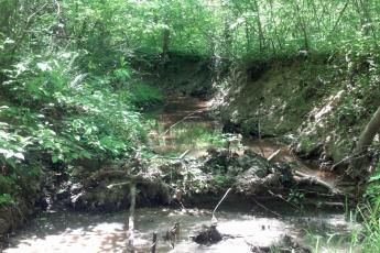 An incised stream channel