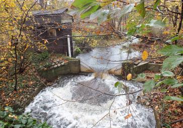 forest stream flowing over weir