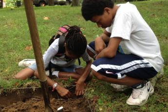 volunteers excavate plot