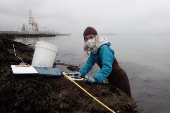 Surveying San Francisco Bay shores.