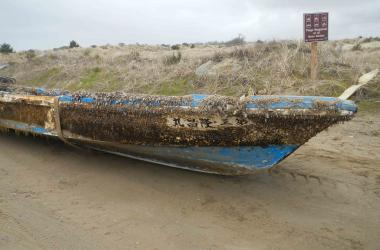 small boat with gooseneck barnacles