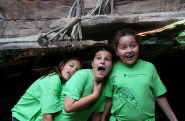 Summer program students in front of an alligator exhibit at the Baltimore Aquarium