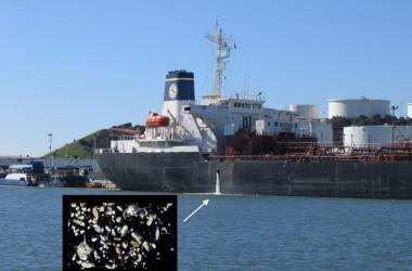 Ship discharging ballast water, with inset image of microorganisms that can lurk in ballast water.