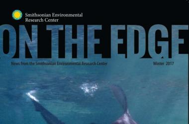 Cover of On The Edge Newsletter