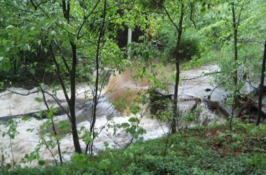 A stream flows over Weir 101 (SERC)