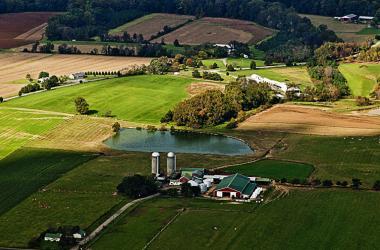 Farm field near SERC. Credit: Chuck Gallegos, with help from Light Hawk