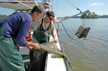 Scientists on boat with trawl net
