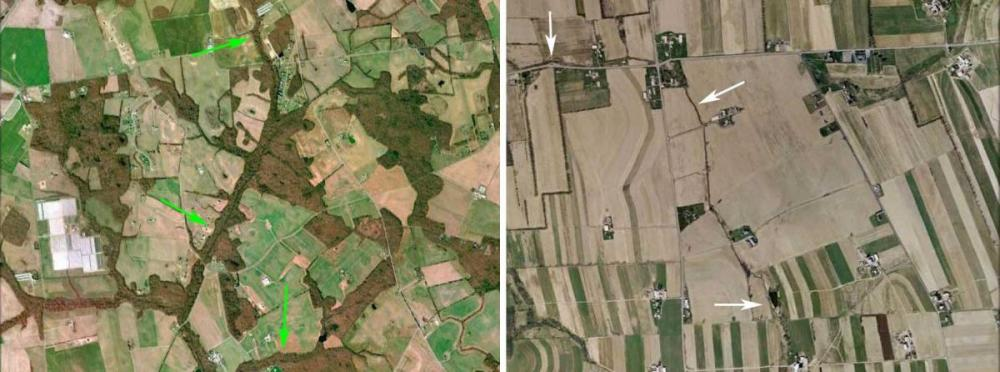 aerial view of streams with and without riparian buffers