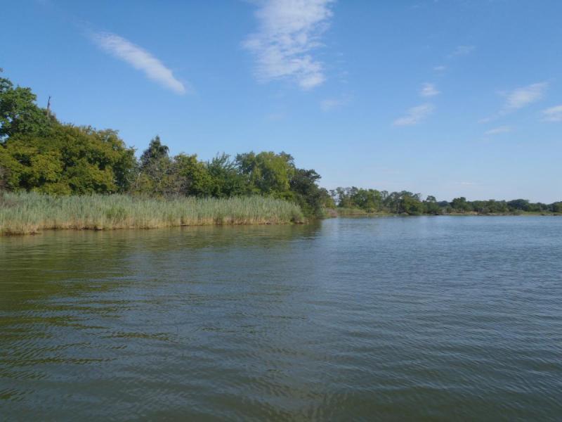 Harris Creek Shoreline
