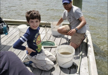 Volunteers help with counting fish and shrimp that are found in the mud crab collectors.