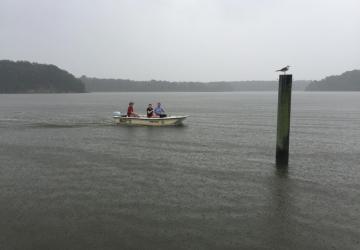 rainy boat