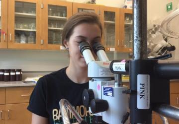 volunteer looking in a microscope