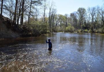 Volunteer sampling in a stream