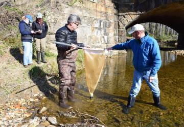 group sampling river herring
