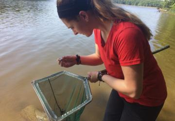 Intern Annette collects shrimp in the field