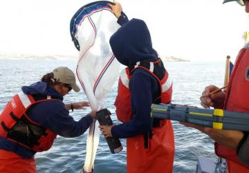 Field crew (Becca, Talene, & Carl) switching out a cod end