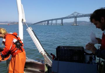 Field crew collecting water quality data